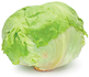 Cabbage. - Copyright – Stock Photo / Register Mark