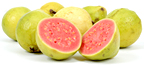 Guava. - Copyright – Stock Photo / Register Mark
