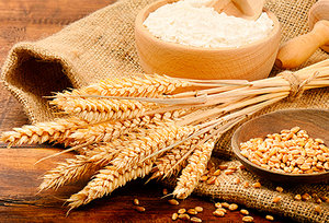 grains - Copyright – Stock Photo / Register Mark