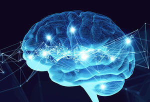 brain - Copyright – Stock Photo / Register Mark