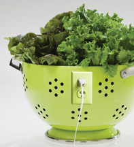 Salad green with outlet - Copyright – Stock Photo / Register Mark