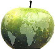 A green apple made to look like the Earth. - Copyright – Stock Photo / Register Mark
