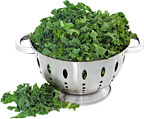 kale - Copyright – Stock Photo / Register Mark
