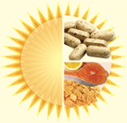 An illustration of the sun with vitamin d tablets and healthy foods. - Copyright – Stock Photo / Register Mark